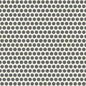 sunbird spot pearl graphite