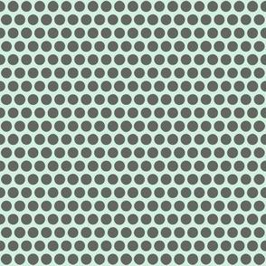 sunbird spot mint graphite