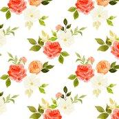 Rpeachy_roses_white-01-01_shop_thumb