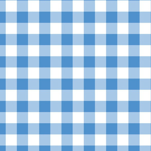 Medium Blue Plaid