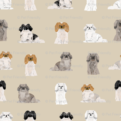 pekingese fabric - dogs pet dog design cute coat colors dog fabric - sand