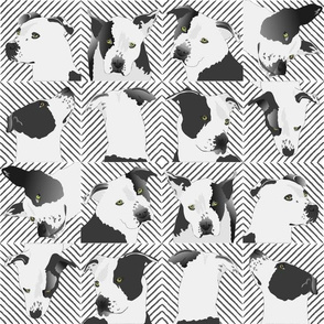 "Little Spotted Dog-3"" white"