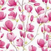 Rrrrrsc_magnoliabloom02_1800_shop_thumb