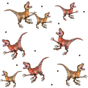 Red and Orange Raptors