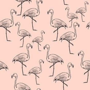 Flamingos on Peach - Smaller Size
