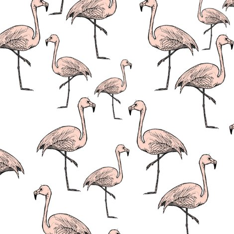 Rflamingos_pink_on_white_shop_preview