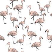 Rflamingos_pink_on_white_shop_thumb