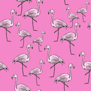 Brighter Pink Flamingos - Smaller Print