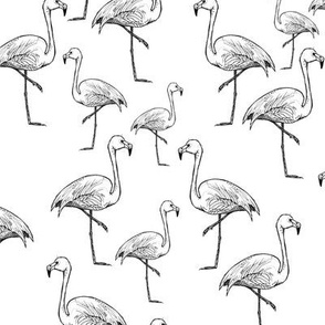 Black and White Flamingos - Smaller Size