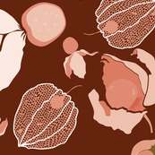 Cape gooseberries - Wine