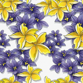 Complementary flowers 2 // white background yellow plumeria purple flowers