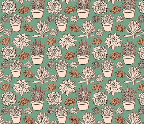 Rsucculents3_shop_preview