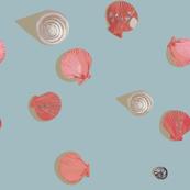 Blue Sea Shells and Scallops