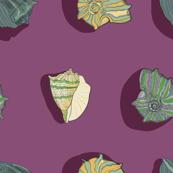 Violet colourful Marin ocean sea shells pattern