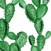 Remerald-cactus_shop_thumb