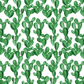 emerald paddle cactus // small