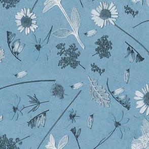 blue fields lg