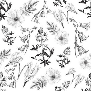 Wildflowers black and white large pattern