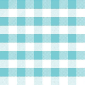 gingham turquoise fabric