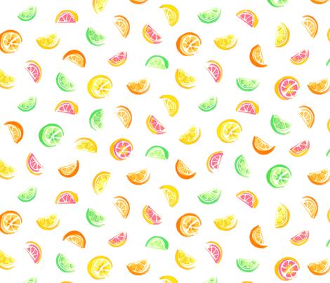 KristyAsaro_citrusWHITE fabric by imaginekristy on Spoonflower - custom fabric