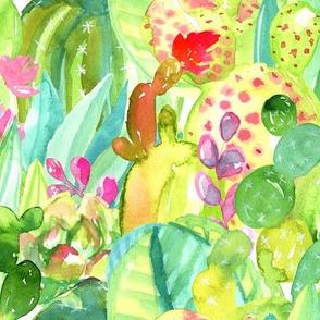 Lush Cacti Jungle