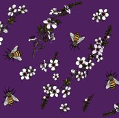 Rrmanuka_with_bees_on_rich_purple_shop_thumb