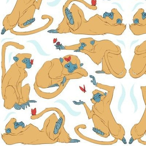 Monkey Shapes