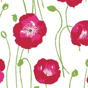 poppies -red