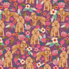 toy poodle fabric apricot toy poodle and florals design - amethyst