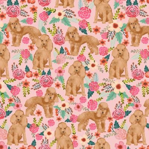 toy poodle fabric apricot toy poodle and florals design - light pink