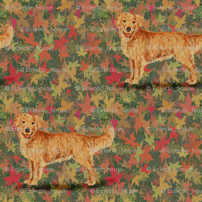 Rgolden_retriever_on_autumn_leaves_preview