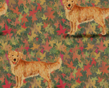 Rgolden_retriever_on_autumn_leaves_thumb
