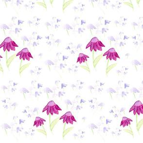 Cone_Flowers