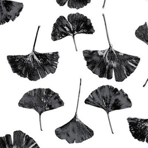 Ginkgo Leaves, White