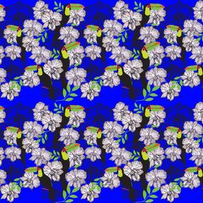 Toucan Orchid Stripes