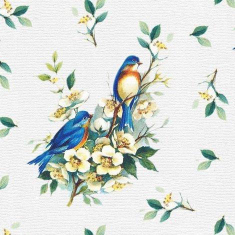 Rrrbirds-979479_960_720_4_shop_preview