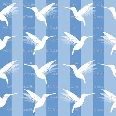 busy little hummingbirds #02