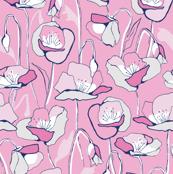 Summer poppy in pink