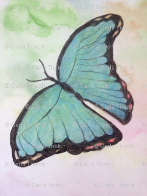 Butterfly_watercolor_pencil_preview