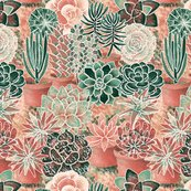 Rsucculent_garden_shop_thumb
