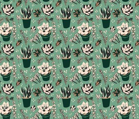 6x6_green_succulents_2_shop_preview