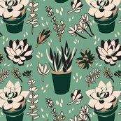 6x6_green_succulents_2_shop_thumb