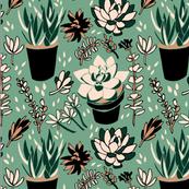 Creamy Green & Black Succulents
