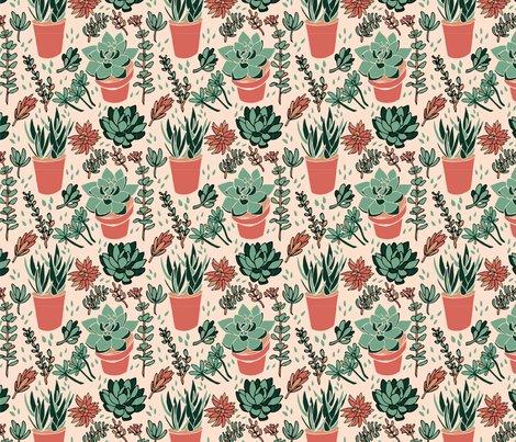 Rsucculents_pattern_limited_pallet_series_shop_preview