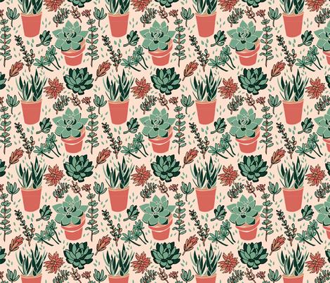 Terra Cotta Succulents fabric by henryfarmcreative on Spoonflower - custom fabric