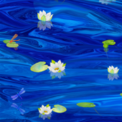 White_Water_Lilies_on_blue
