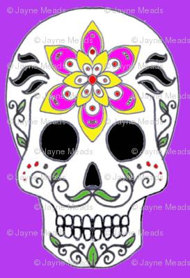 Albert Skull on purple