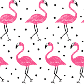 Be A Flamingo - black dots
