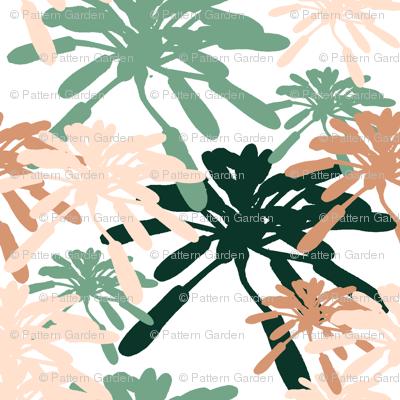 Succulent_Floral_Succulentia_Anastasia_