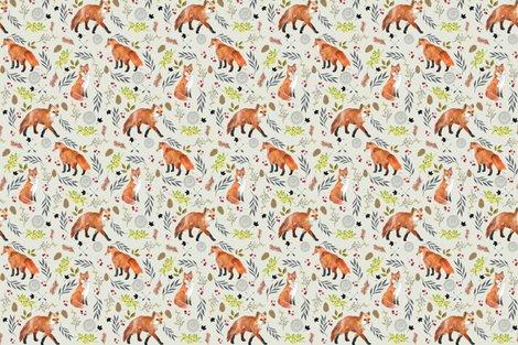 Rrrr6244034_fox_9_shop_preview